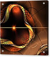 Eye Of The Bug... Acrylic Print