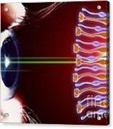Eye, Rods And Cones Of Retina, Artwork Acrylic Print