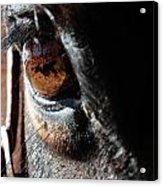 Eyeball Reflection Acrylic Print