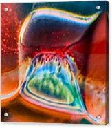 Eyeland Acrylic Print