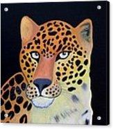 Eye's Acrylic Print by Anthony Morris