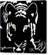 Eyes Of A Tiger 4 Acrylic Print