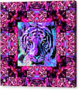 Eyes Of The Bengal Tiger Abstract Window 20130205p0 Acrylic Print by Wingsdomain Art and Photography