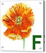 F Stands For Flower Art Alphabet For Kids Room Acrylic Print