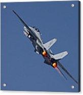 F14 Tomcat - Vf101 Grim Reapers Acrylic Print