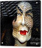Fabulous In Fangs Acrylic Print