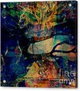 Face Cachee Acrylic Print