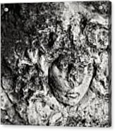 Face Carved In Stone Acrylic Print