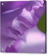 Face In A Glad  Acrylic Print