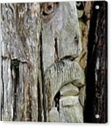 Face In The Forest Acrylic Print