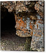 Natures Sclupture - Rock Face Acrylic Print