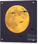 Face On The Moon Acrylic Print