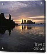 Face Rock Beach Bandon Oregon Acrylic Print