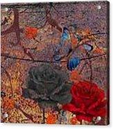 Face The Thorns  Acrylic Print
