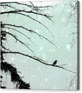 Abstract Faded Winter Acrylic Print