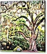 Fairchild Painted Acrylic Print