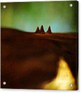 Fairies Giza Acrylic Print by Rebecca Sherman