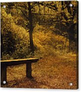 Fairy Autumn Light  Acrylic Print