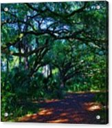 Fairy Path Acrylic Print