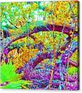 Fairy Tales Acrylic Print