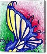 Fairy Wing Acrylic Print