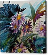 Fairyland Asters Acrylic Print