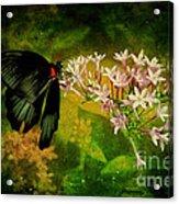 Fairyland Acrylic Print
