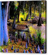 Fairyland Of Gnomes Acrylic Print