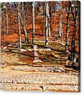 Faith And Freedom Acrylic Print