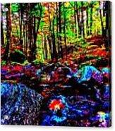 Fall 2014 Ultra 37 Acrylic Print