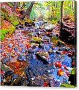 Fall 2014 Y129 Acrylic Print