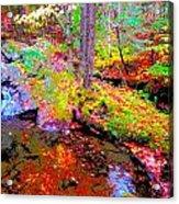 Fall 2014 Y236 Acrylic Print