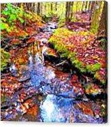 Fall 2014 Y239 Acrylic Print