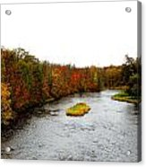 Fall 4 Acrylic Print