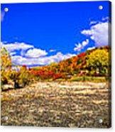 Fall All Around Acrylic Print