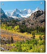 Fall Aspen Below The Sierra Crest Acrylic Print