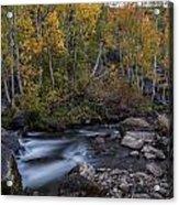 Fall At Bishop Creek Acrylic Print