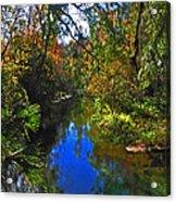Fall At Kelly Park Acrylic Print