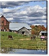 Fall At The Horse Farm Acrylic Print