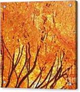 Fall At The Shore Acrylic Print