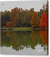 Fall At Tom Brown Park Acrylic Print