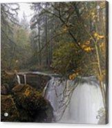 Fall At Whatcom Falls Acrylic Print