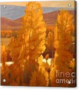 Fall Backlight Acrylic Print by Doyle Shaw