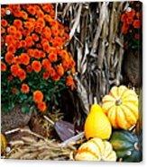 Fall Bounty Acrylic Print