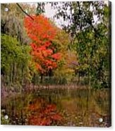 Fall In The Park Acrylic Print