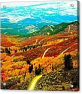 Fall Carpet At Lands End Acrylic Print
