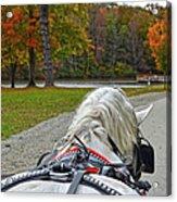 Fall Carriage Ride Acrylic Print
