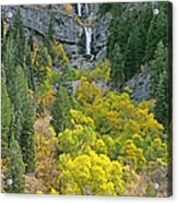 Fall Color And Waterfalls In Provo Canyon Utah Acrylic Print
