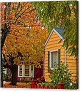 Fall Color Co-ordinated Acrylic Print