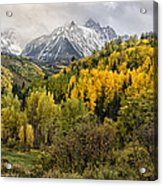 Fall Color In The Rockies Near Ouray Dsc07913 Acrylic Print